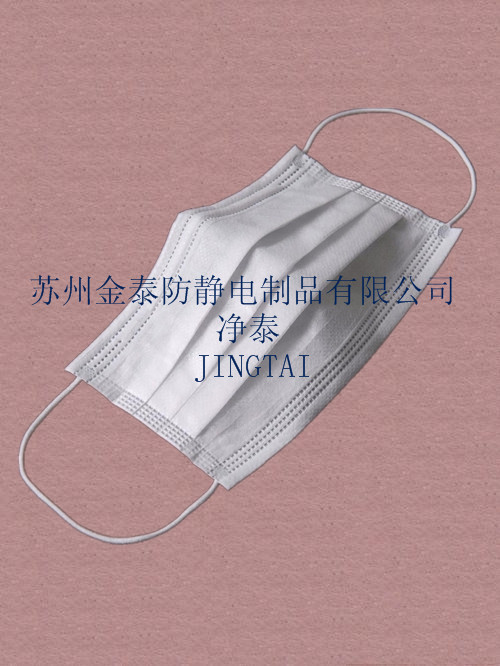 蘇州雙層無紡布口罩