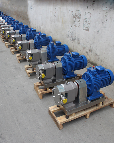 Stainless steel rotor pump