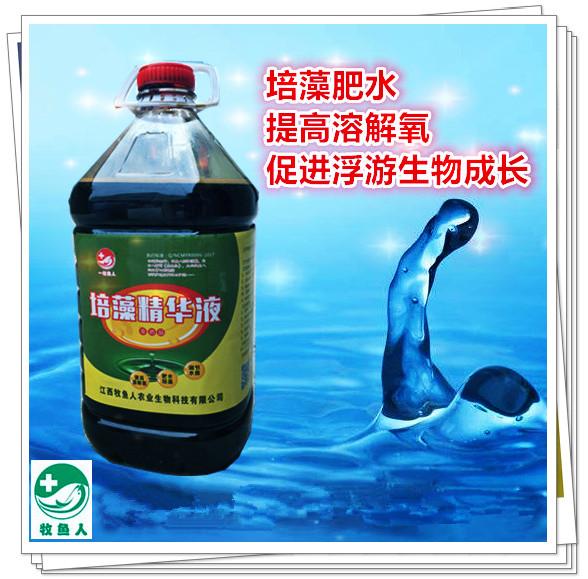 培藻精华液